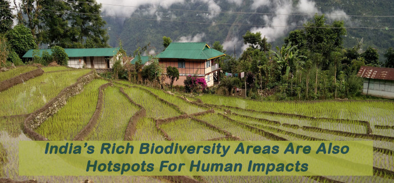 India's Rich Biodiversity Areas Are Also Hotspots For Human Impacts