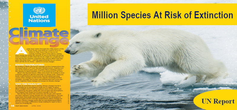 A Million Species Are At The Risk of Extinction: UN Report - UPSC