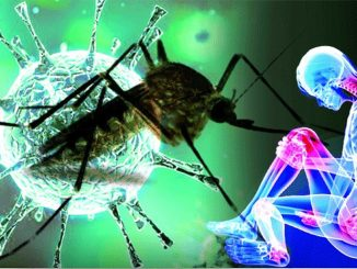 Chikungunya Virus Developed