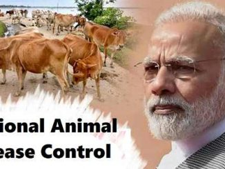 National Animal Control Programme